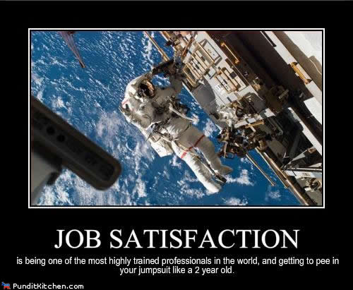 Job Satisfaction in space